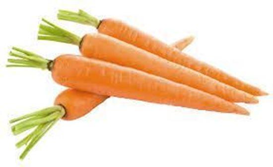 Carrot (காரட்)