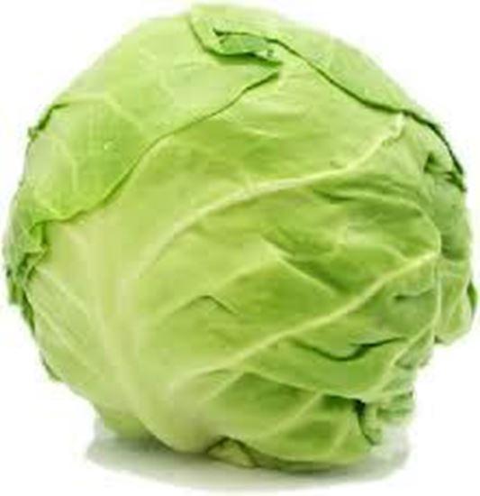 Cabbage (முட்டைகோஸ்)