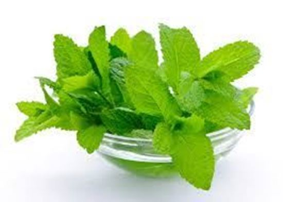 Picture of Mint Leaf (புதினா இலை)