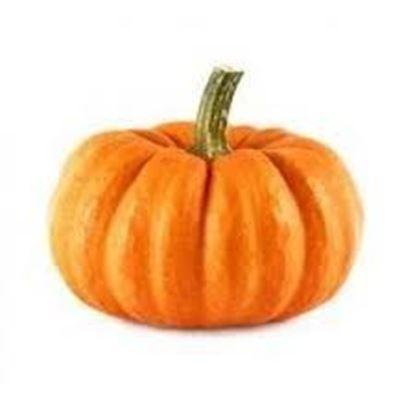 Disco Pumpkin