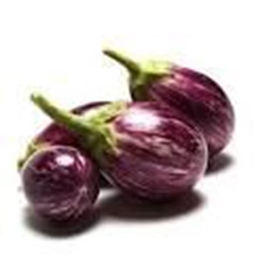 Picture of VARI BRINJAL