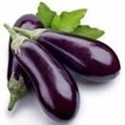 Picture of BIG BRINJAL