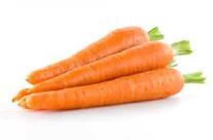 Picture of CARROT ENGLISH
