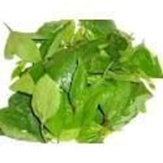 Picture of gongura(per bunch)