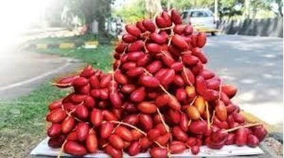 Picture of RED DATES