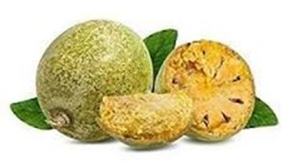 Picture of VILAM FRUIT